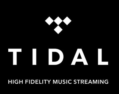 Tidal: Everything You Need To Know About It - Beatrising Blog