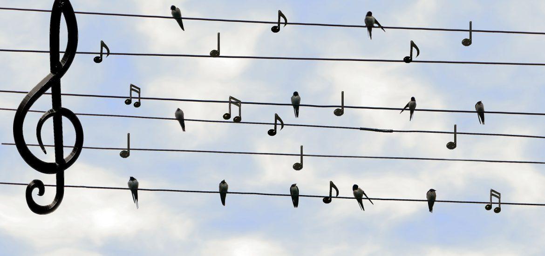 Music Marketing Strategies That Always Work - Beatrising Blog
